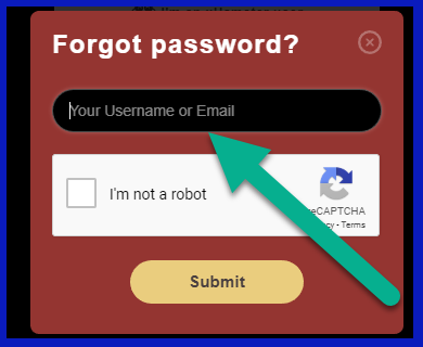 Stripchat restore access or forgot password